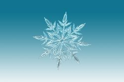 ice-crystal-1065155_640