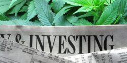 cannabis-marijuna-investment