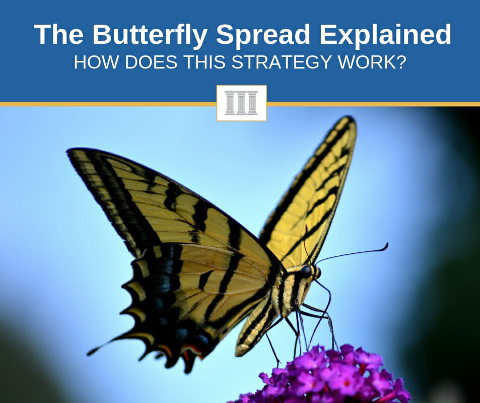 options butterfly spread explained simply