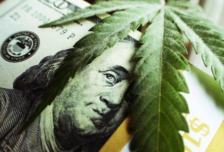 Top 3 Cheapest Marijuana Stocks to Buy Now (2019 Review)