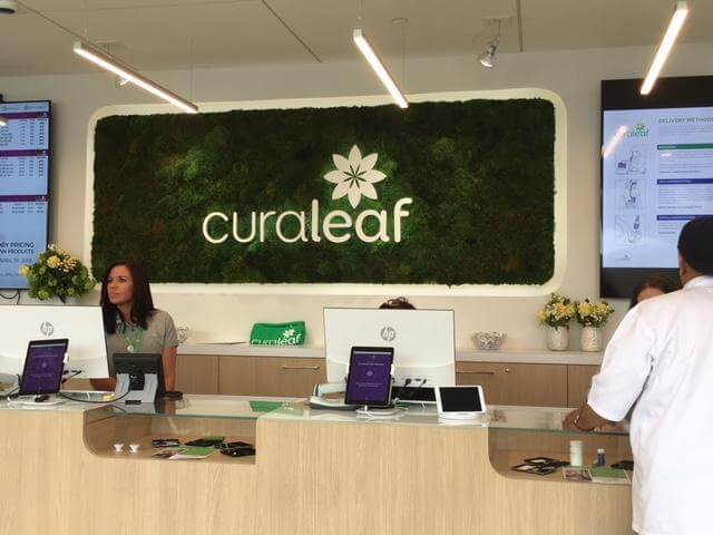 Our Curaleaf Stock Prediction In 2019 (Buy or Sell