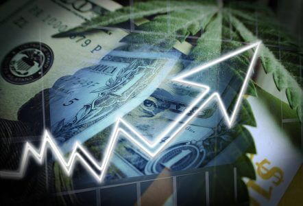 Our Acreage Holdings Stock Prediction In 2019 (Buy or Sell