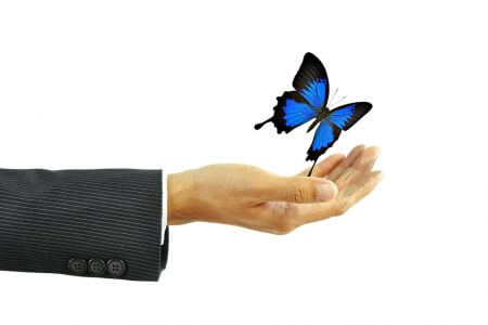 Short Broken Butterfly Explained (Simple Guide)